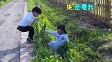 有一个贴心姐姐是怎样的体验?杨艺萱暖心保护超有爱