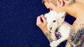 《一线劳模:Justin Bieber》