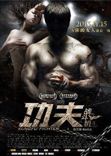 功夫战斗机(2013)