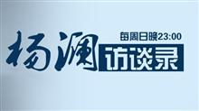 杨澜访谈录2013