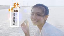 老于推荐:软妹启东黄金海岸挖文蛤