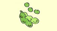 萌熊幼乐园第十六期:种瓜得瓜 种豆得豆