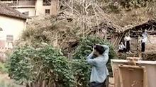 天天向善:松阳古村落改建