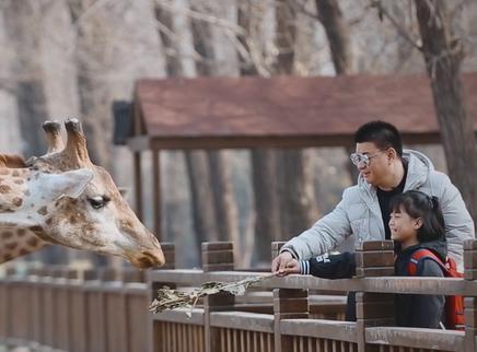 《变形计 青春V记录》第17期:好激动!熊家姐妹花第一次喂长颈鹿