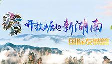 开放崛起新湖南·国际友城篇