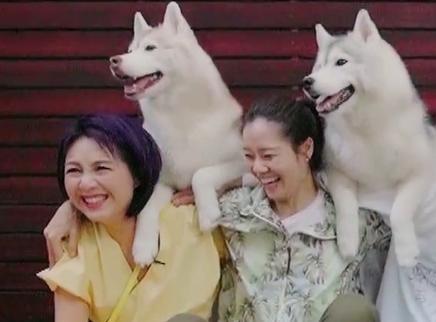 """04期:杨千嬅竟遭""""袭胸""""?"""
