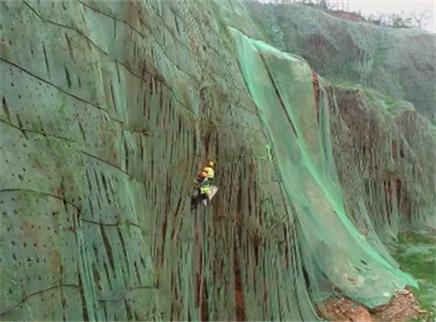 如何用科技让废弃矿坑重披绿装?