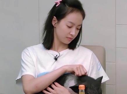 """03期:宋茜""""工作狂""""属性上线"""
